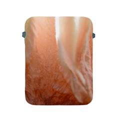 Floating Subdued Peach Apple Ipad 2/3/4 Protective Soft Cases by timelessartoncanvas