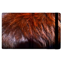 Red Hair Apple Ipad 3/4 Flip Case by timelessartoncanvas