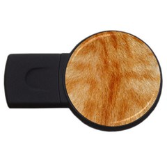 Orange Fur 2 Usb Flash Drive Round (2 Gb)  by timelessartoncanvas