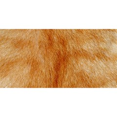 Orange Fur 2 You Are Invited 3d Greeting Card (8x4)