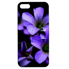Springtime Flower Design Apple Iphone 5 Hardshell Case With Stand by timelessartoncanvas