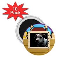 But The Pit Bull 1 75  Magnets (10 Pack)  by ButThePitBull