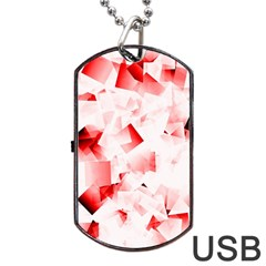 Modern Red Cubes Dog Tag Usb Flash (two Sides)  by timelessartoncanvas