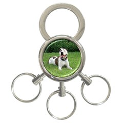 Pit Bull T Bone 3 Ring Key Chains