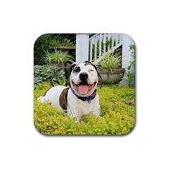 Pit Bull T Bone Rubber Square Coaster (4 Pack)  by ButThePitBull