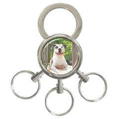 Pit Bull T Bone s Tree House 3 Ring Key Chains