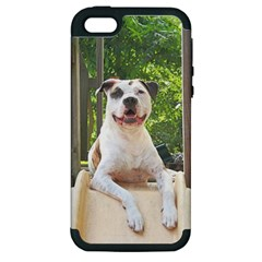 Pit Bull T Bone s Tree House Apple Iphone 5 Hardshell Case (pc+silicone) by ButThePitBull
