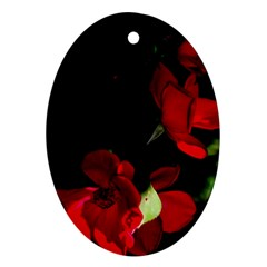 Roses 1 Ornament (oval)  by timelessartoncanvas