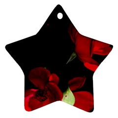 Roses 1 Star Ornament (two Sides)  by timelessartoncanvas