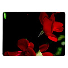 Roses 1 Samsung Galaxy Tab 10 1  P7500 Flip Case by timelessartoncanvas