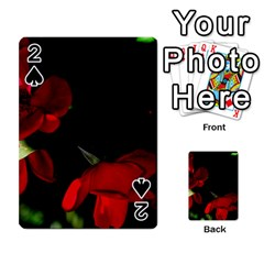 Roses 2 Playing Cards 54 Designs  by timelessartoncanvas