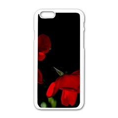 Roses 2 Apple Iphone 6/6s White Enamel Case by timelessartoncanvas