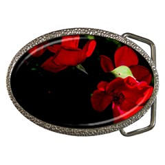 Roses 3 Belt Buckles by timelessartoncanvas