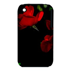 Roses 3 Apple Iphone 3g/3gs Hardshell Case (pc+silicone) by timelessartoncanvas