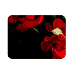 Roses 3 Double Sided Flano Blanket (mini)  by timelessartoncanvas