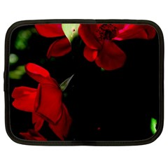 Roses 4 Netbook Case (xl)  by timelessartoncanvas