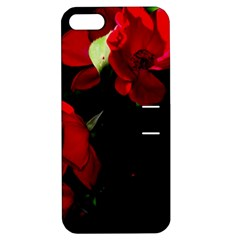 Roses 4 Apple Iphone 5 Hardshell Case With Stand by timelessartoncanvas