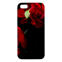 Roses 4 Apple Iphone 5 Premium Hardshell Case by timelessartoncanvas