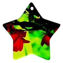 Red Roses And Bright Green 2 Star Ornament (two Sides)  by timelessartoncanvas