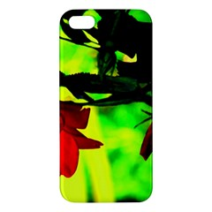 Red Roses And Bright Green 2 Apple Iphone 5 Premium Hardshell Case by timelessartoncanvas