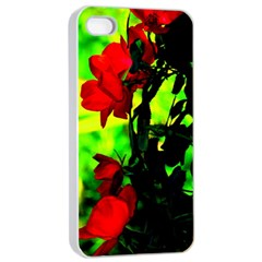 Red Roses And Bright Green 3 Apple Iphone 4/4s Seamless Case (white) by timelessartoncanvas