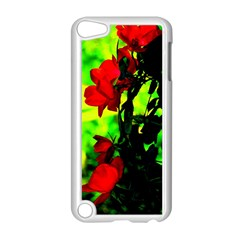 Red Roses And Bright Green 3 Apple Ipod Touch 5 Case (white) by timelessartoncanvas