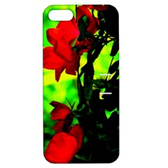 Red Roses And Bright Green 3 Apple Iphone 5 Hardshell Case With Stand by timelessartoncanvas