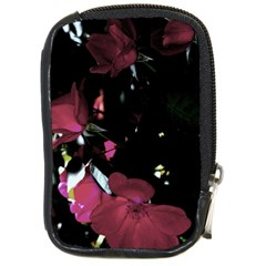Mauve Pink Roses Compact Camera Cases by timelessartoncanvas