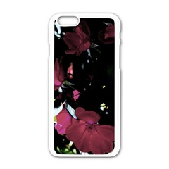Mauve Pink Roses Apple Iphone 6/6s White Enamel Case by timelessartoncanvas