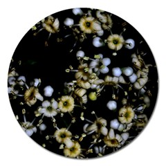 Little White Flowers 2 Magnet 5  (round) by timelessartoncanvas