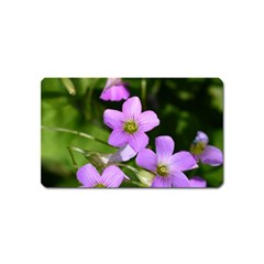 Little Purple Flowers Magnet (name Card) by timelessartoncanvas