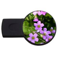 Little Purple Flowers Usb Flash Drive Round (4 Gb)  by timelessartoncanvas