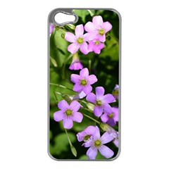 Little Purple Flowers Apple Iphone 5 Case (silver) by timelessartoncanvas