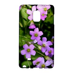 Little Purple Flowers Galaxy Note Edge by timelessartoncanvas