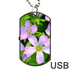 Little Purple Flowers 2 Dog Tag Usb Flash (two Sides)  by timelessartoncanvas