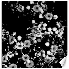 Little Black And White Flowers Canvas 16  X 16   by timelessartoncanvas