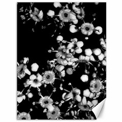 Little Black And White Flowers Canvas 36  X 48   by timelessartoncanvas