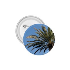 Tropical Palm Tree  1 75  Buttons by BrightVibesDesign