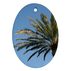 Tropical Palm Tree  Oval Ornament (two Sides) by BrightVibesDesign