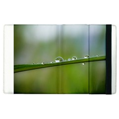 After The Rain Apple Ipad 3/4 Flip Case by LauraNATURE