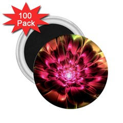 Red Peony 2 25  Magnets (100 Pack)
