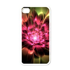Red Peony Apple Iphone 4 Case (white) by Delasel