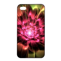 Red Peony Apple Iphone 4/4s Seamless Case (black) by Delasel