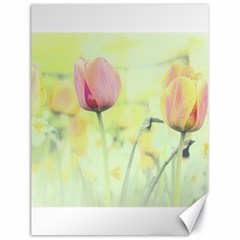 Softness Of Spring Canvas 18  X 24   by TastefulDesigns