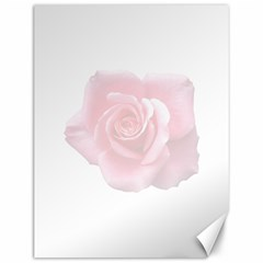 Pink White Love Rose Canvas 12  X 16   by yoursparklingshop