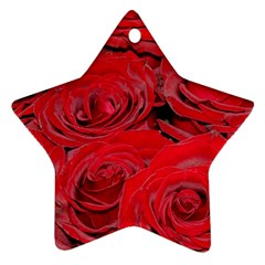 Red Love Roses Ornament (star)  by yoursparklingshop