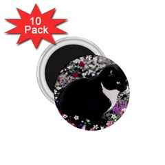 Freckles In Flowers Ii, Black White Tux Cat 1 75  Magnets (10 Pack)  by DianeClancy