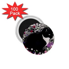 Freckles In Flowers Ii, Black White Tux Cat 1 75  Magnets (100 Pack)  by DianeClancy