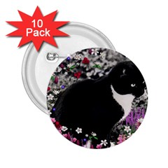 Freckles In Flowers Ii, Black White Tux Cat 2 25  Buttons (10 Pack)  by DianeClancy