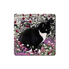 Freckles In Flowers Ii, Black White Tux Cat Square Magnet by DianeClancy